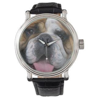 En engelsk bulldogg i Belgien Armbandsur