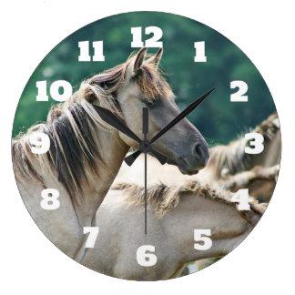 En flock av Brumby hästar från Australien Stor Klocka