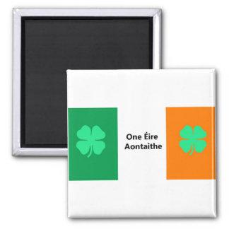 En förenad Irland flagga Magnet