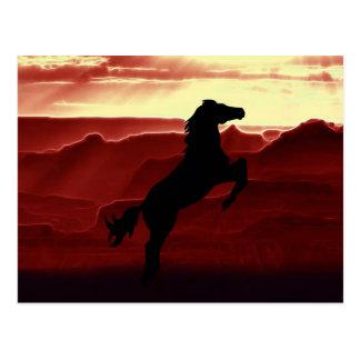 En fostra hästsilhouette vykort