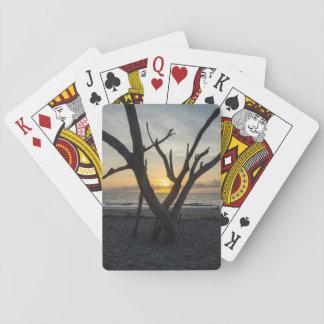 En galenskapsoluppgång casinokort