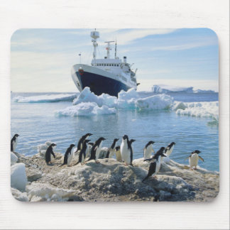 En grupp av pingvin som står på en isigstrand musmatta