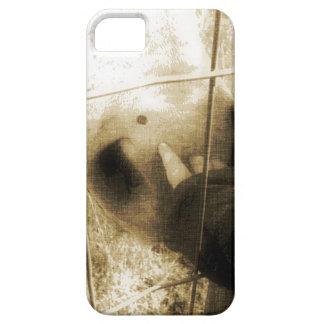 En häst och en baby iPhone 5 hud