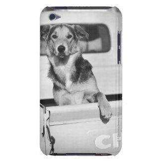 En hund i en bil iPod Case-Mate fodral