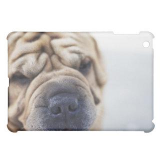 En hund, slut-upp iPad mini fodral