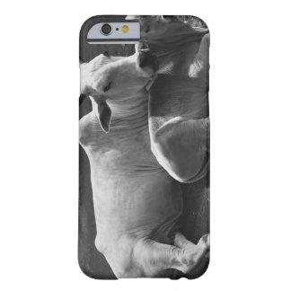 En indisk ko och dess kalv som ljuger i en barely there iPhone 6 fodral