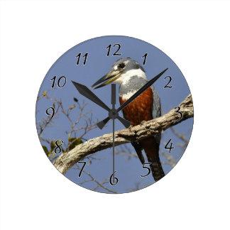 En Kingfisher Perches i en gren av ett träd Rund Klocka