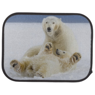 En kvinnlig polar björn och henne ungelek i snön bilmatta