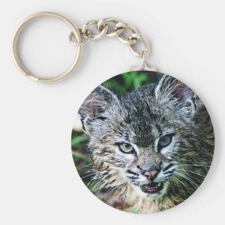 En le Bobcatkattunge Rund Nyckelring