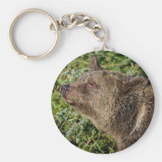 En le Grizzlybjörn Rund Nyckelring