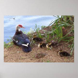 En moranka & henne Ducklings Poster