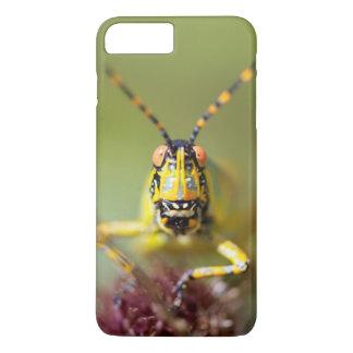 En närbild av en elegant gräshoppa