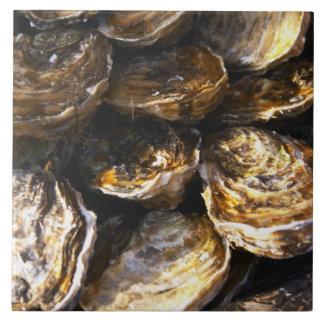 En plätera av oysters. kakelplatta