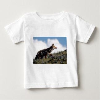 En prärievarg går i den Yellowstone Tröjor