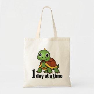 En sköldpadda för dag i sänder -