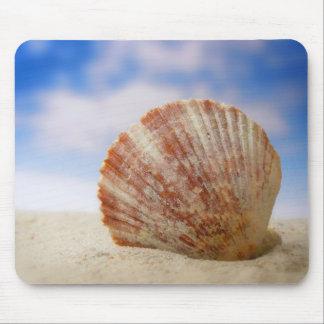 En snäcka Propped i sanden Musmatta