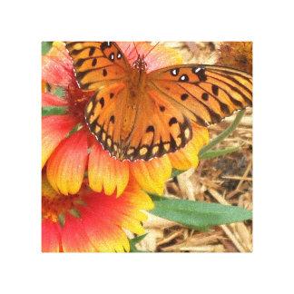 En spektakulär fjäril på min Gaillardia Pulchella Canvastryck