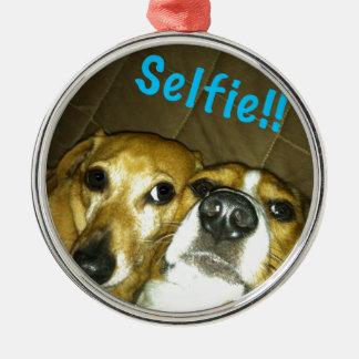En tax och en beagle som tar en selfie rund silverfärgad julgransprydnad