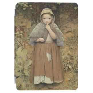 En tiggare på vägen, 1856 iPad air skydd