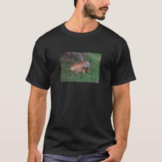 En vildleguan i El Salvador skrivev ut manar T-shirts