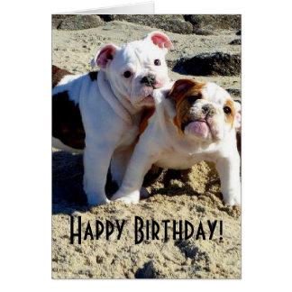 Engelsk födelsedag för bulldoggvalpkärlek hälsningskort