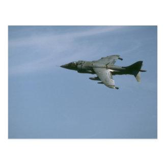 Engelsk harhund i flyg vykort