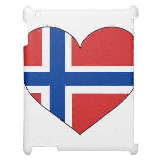 Enkel norgeflagga iPad skydd