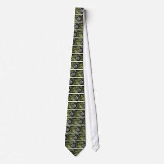 enorm silverbackberggorilla slips