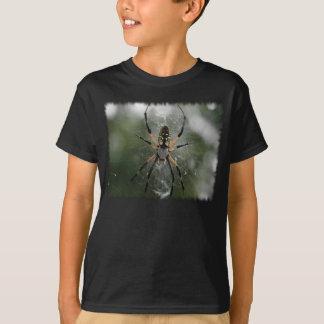 Enorm spindel/gult- & svartArgiope T Shirts