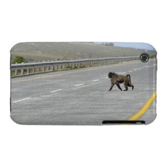 Ensam väg för huvudväg för Chacma baboon korsning iPhone 3 Case-Mate Case