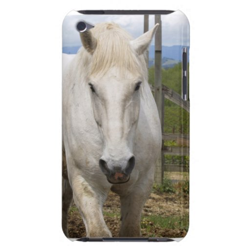 Equine iTouchfodral för vit iPod Touch Case-Mate Case