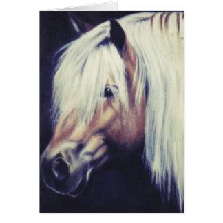 "Equine kort ""för Haflinger ponny"""