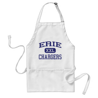 Erie uppladdaremellanstadium Erie Illinois Förkläde