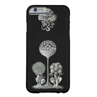 ERNST HAECKEL: Fodral för Mycetozoa iPhone 6 Barely There iPhone 6 Skal