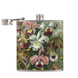 Ernst Haeckel Orchids, vintageRainforestblommor Fickplunta