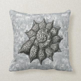 Ernst Haeckel Radiolariasnäcka 1 Kuddar