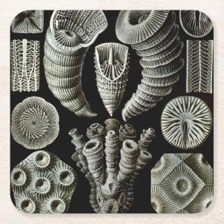 Ernst Haeckel Tetracorallia korall Underlägg Papper Kvadrat