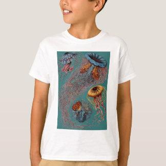 Ernst Haeckels disko Medusae T Shirts