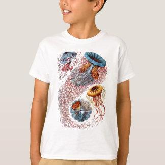 Ernst Haeckels disko Medusae Tröjor