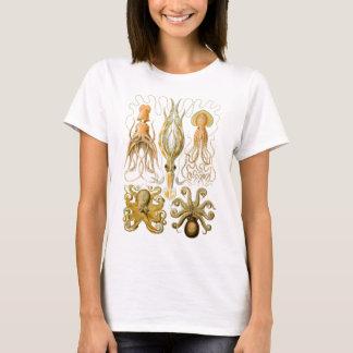 Ernst Haeckels Gamochonia Tee Shirts