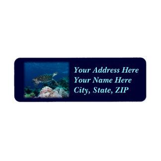 Etikett för havssköldpaddaadress returadress etikett