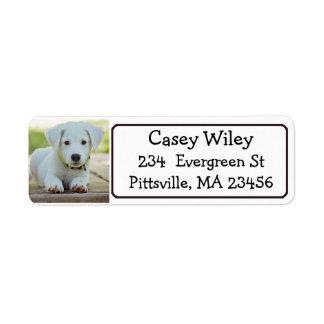 Etikett för personlighusdjur- eller hundadress returadress etikett