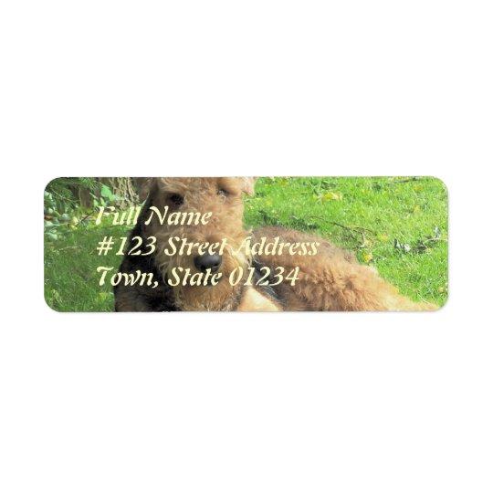 Etikett för returadress för AiredaleTerrierhund Returadress Etikett