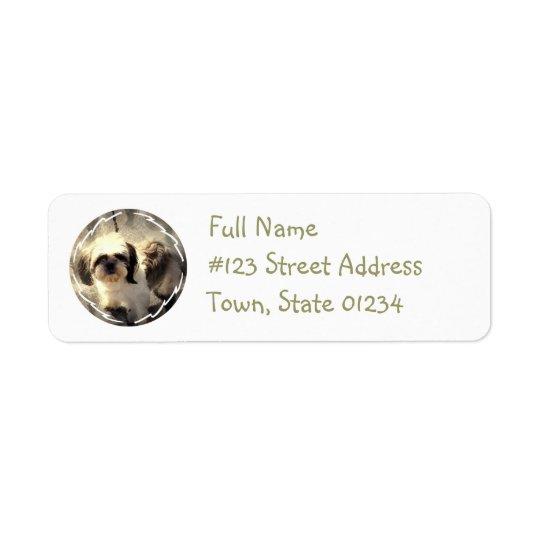 Etikett för returadress för Shih Tsu-hund Returadress Etikett