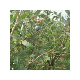 Ett blåbär canvastryck