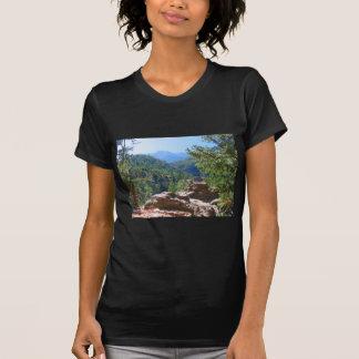 Ett enormt tryck av en stenig bergplats tröja