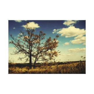 Ett ensamt träd i mittet av ett torrt fält canvastryck
