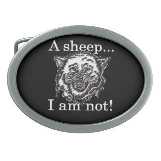 Ett får, I-förmiddag inte