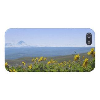 Ett foto av Mt-huvan - som lokaliseras i Oregon iPhone 5 Hud