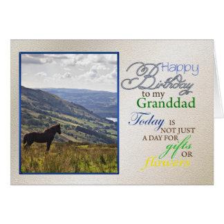 Ett hästfödelsedagkort för granddad. hälsningskort